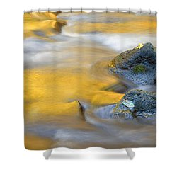 Golden Refuge Shower Curtain by Mike  Dawson