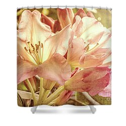 Golden Reserve Shower Curtain