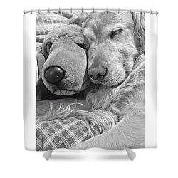 Golden Retriever Dog And Friend Shower Curtain by Jennie Marie Schell