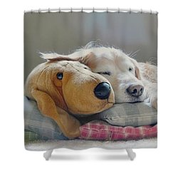 Golden Retriever Dog Sleeping With My Friend Shower Curtain