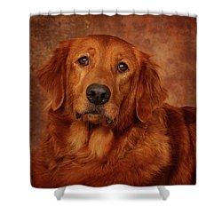 Shower Curtain featuring the photograph Golden Retriever by Greg Mimbs