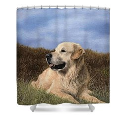 Golden Retriever Painting Shower Curtain