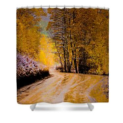 Golden Road Shower Curtain