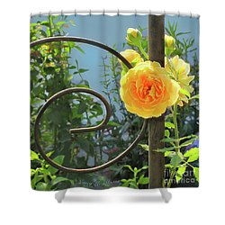 Shower Curtain featuring the photograph Golden Ruffled Rose On Iron Trellis by Nancy Lee Moran