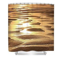 Golden Sands Shower Curtain by Roupen  Baker