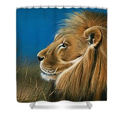 Golden Sentinal Shower Curtain