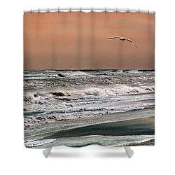 Golden Shore Shower Curtain by Steve Karol