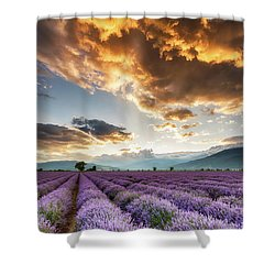 Golden Sky, Violet Earth Shower Curtain by Evgeni Dinev