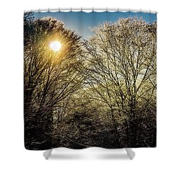 Golden Snow Shower Curtain