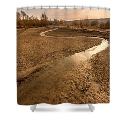 Shower Curtain featuring the photograph Golden Stream by Davorin Mance