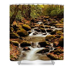 Shower Curtain featuring the photograph Golden Stream In The Great Smoky Mountains by Debbie Green