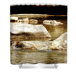 Golden Stream Shower Curtain by Nancy Landry