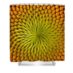 Shower Curtain featuring the photograph Golden Sunflower Eye by Chris Berry