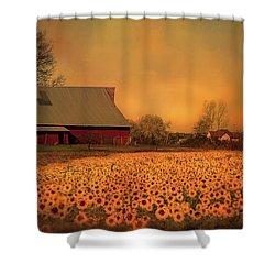 Golden Sunflower Harvest Shower Curtain