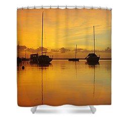 Golden Sunrise At Boreen Point Shower Curtain