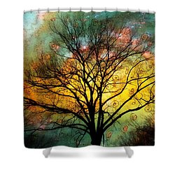 Golden Sunset Treescape Shower Curtain by Barbara Chichester