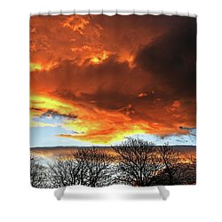 Golden Sunset With Filigree Trees Shower Curtain