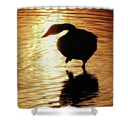 Shower Curtain featuring the photograph Golden Swan by Tatsuya Atarashi