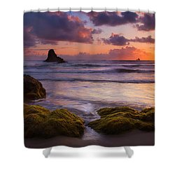 Golden Tides Shower Curtain by Mike  Dawson