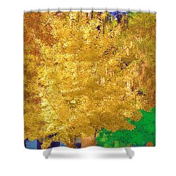 Shower Curtain featuring the photograph Golden Tree by Donna Bentley