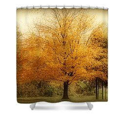 Golden Tree Shower Curtain by Sandy Keeton