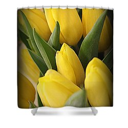 Golden Tulips Shower Curtain