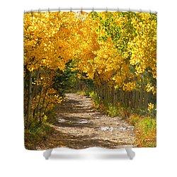 Golden Tunnel Shower Curtain