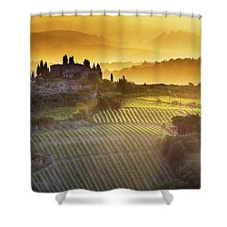 Golden Tuscany Shower Curtain