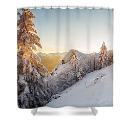 Golden Winter Shower Curtain by Evgeni Dinev