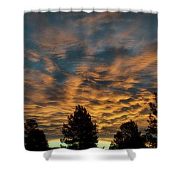 Golden Winter Morning Shower Curtain