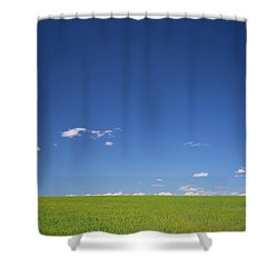 Shower Curtain featuring the photograph Golden Yellow Of Big Wheat Field,meadows And Closeup Seed With B by Jingjits Photography