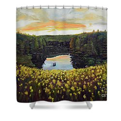 Goldenrods On Davenport Lake-ellijay, Ga  Shower Curtain