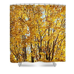 Shower Curtain featuring the photograph Goldenyellows by Aimelle