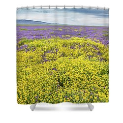 Shower Curtain featuring the photograph Goldfield And Phacelia by Marc Crumpler