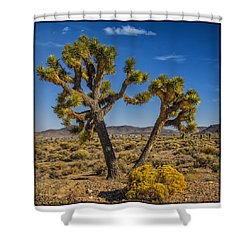 Shower Curtain featuring the photograph Goldfield Nv From Gem Field Rd by Janis Knight