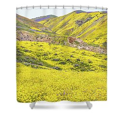 Shower Curtain featuring the photograph Goldfields And Temblor Hills by Marc Crumpler