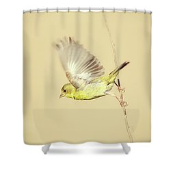 Goldfinch Flying Off  Shower Curtain