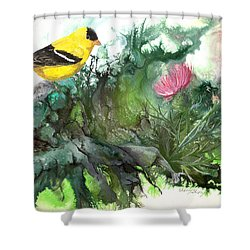 Shower Curtain featuring the painting Goldfinch by Sherry Shipley