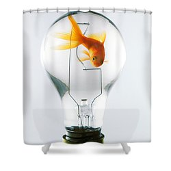 Goldfish In Light Bulb  Shower Curtain