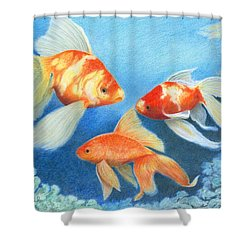 Shower Curtain featuring the drawing Goldfish Tank by Phyllis Howard