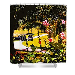 Golf Of Mexico 4 Shower Curtain