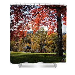 Gonzaga With Autumn Tree Canopy Shower Curtain by Carol Groenen