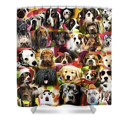 Shower Curtain featuring the photograph Good Boys by John Rizzuto