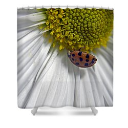 Good Luck Shower Curtain by Elsa Marie Santoro