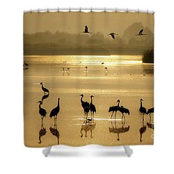 Good Morning Chula Lake Shower Curtain