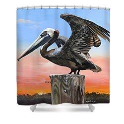 Good Morning Florida Shower Curtain