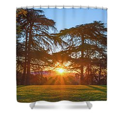 Good Morning, Good Morning Shower Curtain