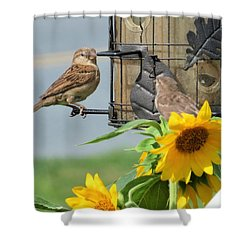 Good Morning Shower Curtain by Jeanette Oberholtzer