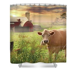 Shower Curtain featuring the photograph Good Morning by Lori Deiter