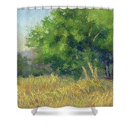 Good Morning Summer Shower Curtain